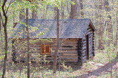 Cabine de registro na floresta Foto de Stock