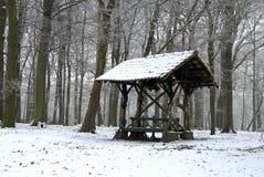 Cabine do couro cru no inverno Imagem de Stock
