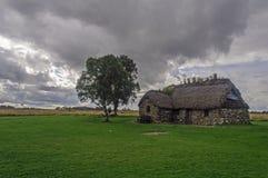 Cabine e uma árvore no campo de batalha Fotografia de Stock Royalty Free