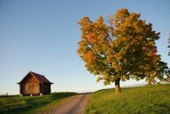 Cabine et arbre, pris près du crépuscule en automne Photo stock