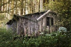 Cabine in het bos royalty-vrije stock foto