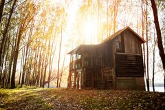 Cabine in het hout - zonsondergang in het bos Royalty-vrije Stock Afbeelding