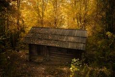 Cabine nas madeiras Fotografia de Stock Royalty Free
