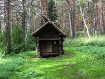 Cabine nas madeiras Fotos de Stock Royalty Free