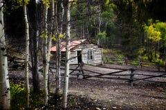 Cabine que vive profundamente nas madeiras Fotografia de Stock