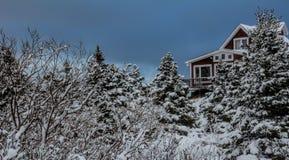 Cabine rústica nas madeiras, Avalon Peninsula em Terra Nova, Canadá Imagem de Stock