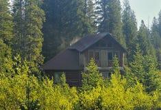 Cabine sur les bois Photos stock