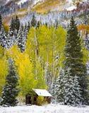 Cabine velha no San Juan Mountains de Colorado Imagens de Stock