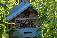 Cabine/Vogelhaus d'oiseau Images stock