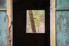Cabines de madeira arruinadas velhas do turista Fotografia de Stock