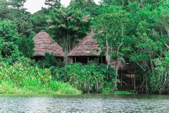Cabines langs de rivier in Amazonië stock foto's
