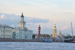 Cabinet of curiosities in St.Petersburg. Royalty Free Stock Images