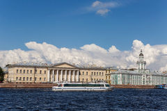 Cabinet of curiosities in St.Petersburg, Russia Royalty Free Stock Images