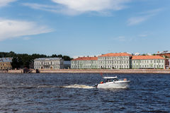 Cabinet of curiosities in St.Petersburg, Russia Royalty Free Stock Photography