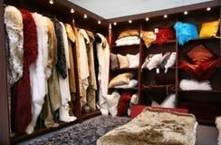 Cabinet de fourrure Photographie stock libre de droits