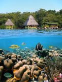 Cabins and corals Stock Photography
