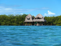 Cabins and sea. Over the sea cabins with mangrove trees and water surface Royalty Free Stock Photo