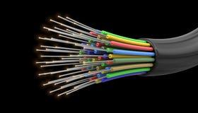 Cable óptico de la fibra (trayectoria de recortes incluida) Imagen de archivo