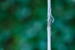 Cable alrededor a romperse. Cable de acero dañado. foto de archivo libre de regalías