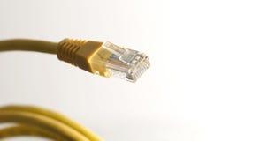 Cable amarillo de la red con el conector RJ45 en el fondo blanco Foto de archivo libre de regalías