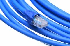 Cable azul de la red de ordenadores con el enchufe Imagen de archivo libre de regalías
