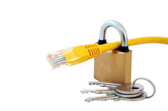 Cable, bloqueo y claves de la red Fotografía de archivo