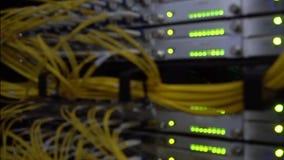 Cable borroso de la red que conecta en el interruptor de la base de la red Cierre para arriba Centelleo llevado metrajes