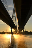 Cable-braced bridge across the river Neva Royalty Free Stock Image