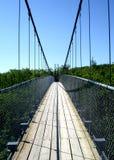 Cable Bridge Royalty Free Stock Photo