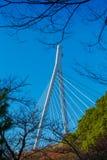 Cable bridge, Royalty Free Stock Photo
