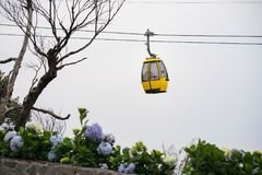 Cable car with flowers and dry tree on foreground.  Royalty Free Stock Photos