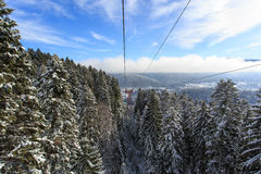 Cable car over a forrest in winter Stock Image