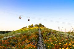 Cable cars and colorful flowers in a garden up in a hill Stock Image