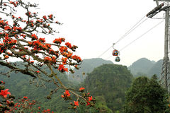 Cable cars near Sapa Royalty Free Stock Photos