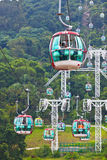 Cable cars over tropical trees in Hong Kong Stock Images