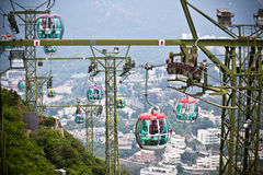Cable cars over tropical trees in Hong Kong Stock Image