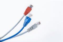Cable colorido de la red con los conectores RJ45 Fotografía de archivo libre de regalías