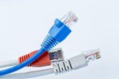 Cable colorido de la red con los conectores RJ45 fotografía de archivo