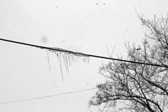 Cable icicle Royalty Free Stock Photos