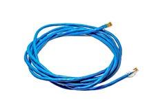 Cable de conexión azul de la red de ordenadores RJ45 Imagenes de archivo