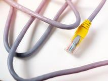 Cable de Ethernet imágenes de archivo libres de regalías