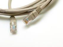 Cable de Ethernet Foto de archivo