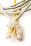 Cable de Ethernet Imagenes de archivo