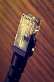 Cable de Ethernet Imagen de archivo libre de regalías