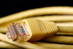 Cable de Ethernet amarillo Fotografía de archivo libre de regalías