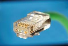 Cable de Ethernet con el conector Fotos de archivo libres de regalías