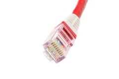 Cable de Ethernet del ordenador aislado Foto de archivo libre de regalías