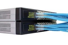 Cable de Ethernet RJ45 conectado con el interruptor Foto de archivo