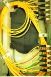 Cable de interfaz. Foto de archivo libre de regalías