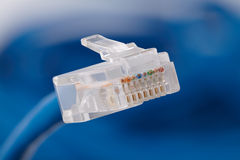 Cable de Internet Fotografía de archivo libre de regalías